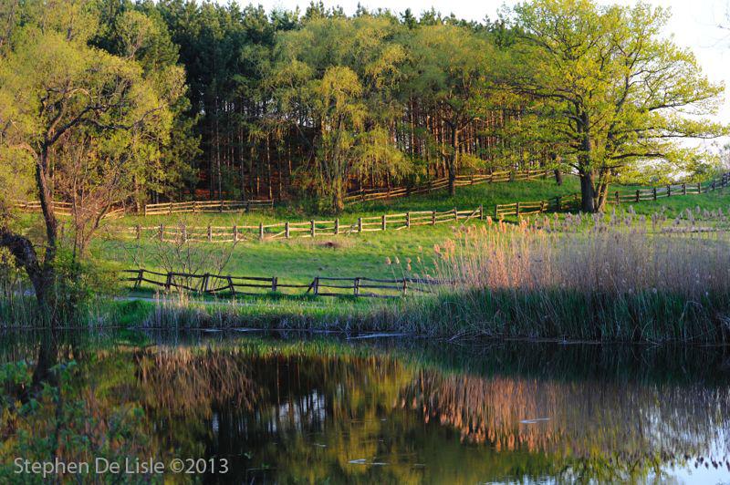 KSR_landscapes01